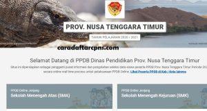Pengumuman Hasil Seleksi PPDB SMA SMK Negeri Provinsi Nusa Tenggara Timur 2020/2021