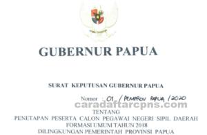 Pengumuman Hasil Seleksi CPNS Formasi 2018 di Lingkungan Pemprov Papua