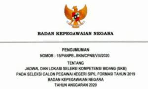 Pengumuman Hasil SKB CPNS BKN Formasi 2019