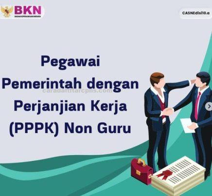 Jadwal dan syarat Pendaftaran PPPK Non Guru 2021