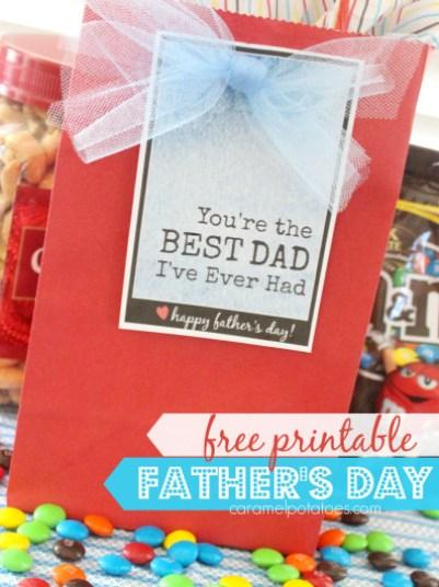 best-dad-1141