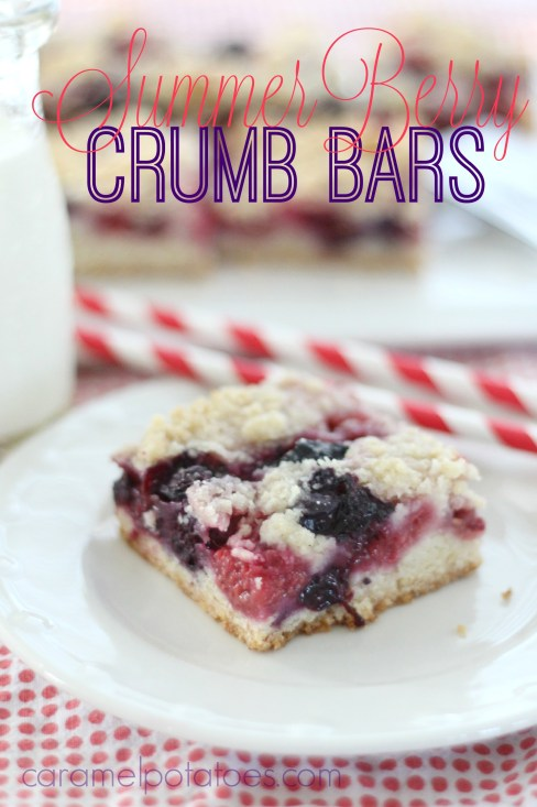 summer berry crumb bars 098