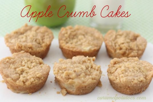 Apple-Crumb-Cakes-1024x679