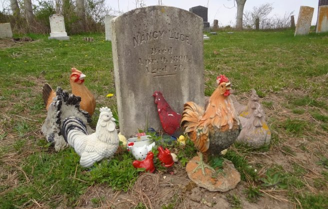 Nancy Luce Poet Gravesite with Chickens Martha's Vineyard