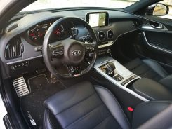 Interior Stinger