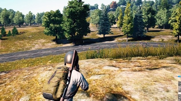 12. PlayerUnknown's Battlegrounds (PUBG)
