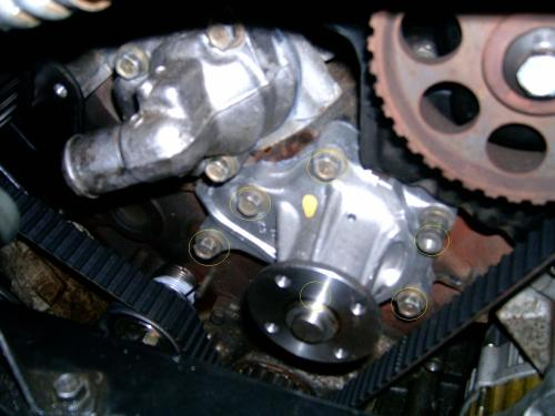 small resolution of nissan maxima water pump