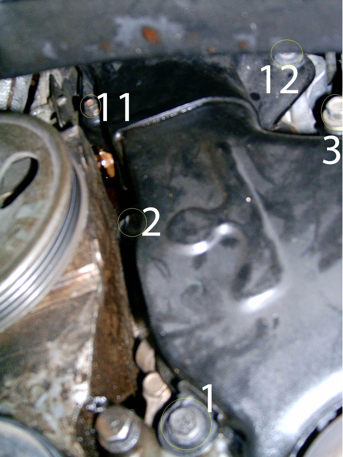 Nissan Maxima Timing Belt