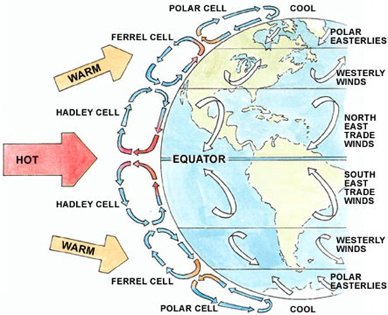 global wind patterns diagram class for library management system pacific winds change the speed of warming says new study edu 1 3 image