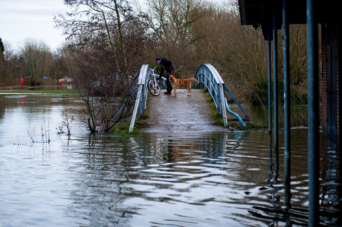 DPACYH Oxford, UK. 10th January 2014. Man and dog on bridge cut off by flooding River levels in Oxford are at their highest levels since 2007 Credit: roger askew/Alamy Live News