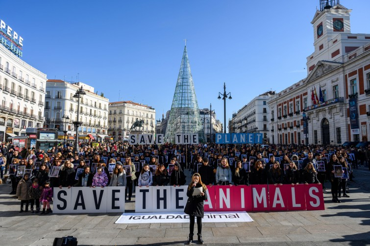 People denouncing the impact of industrial livestock on the planet.