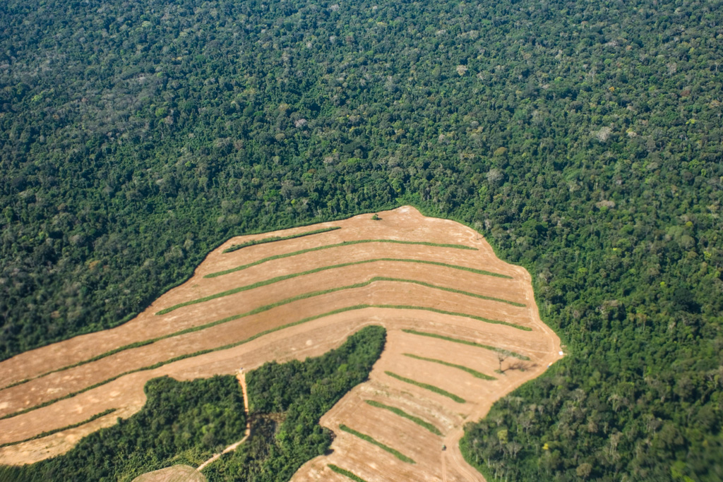 deforestation is the act of clearing a wide area of trees to change the purpose of the land. Scientists Calculate Trade Related Deforestation Footprint Of Rich Countries Carbon Brief