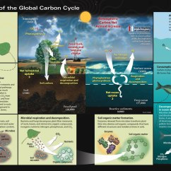 Diagram With Inputs And Outputs Of Photosynthesis Process Hpm Light Switch Wiring What Is The Carbon Cycle Science Behind It United Values In Parentheses Are Estimates Main Reservoirs Gigatons Gt As