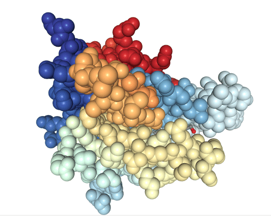 Space-fill model of the RBP completely covering RA molecule.