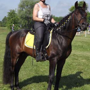 Monica Grundmann & Stallion
