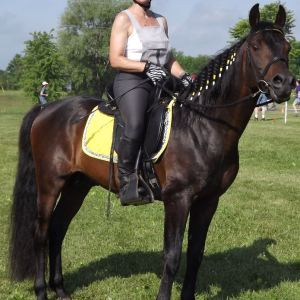 Monica Grundmann & Stallion
