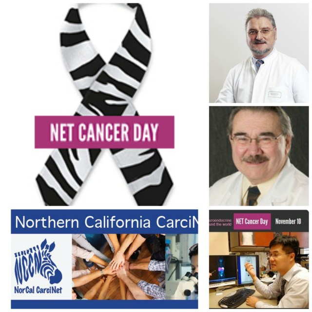 NET Cancer Day Webinar 2013 NorCal CarciNET