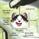 Car Cuties in Car Midnight Suede