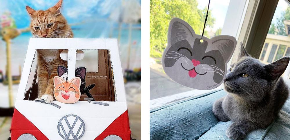 Instagram Cuties Car Cuties