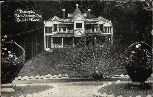 Peacock Eden Springs Zoo House Of David Benton Harbor MI