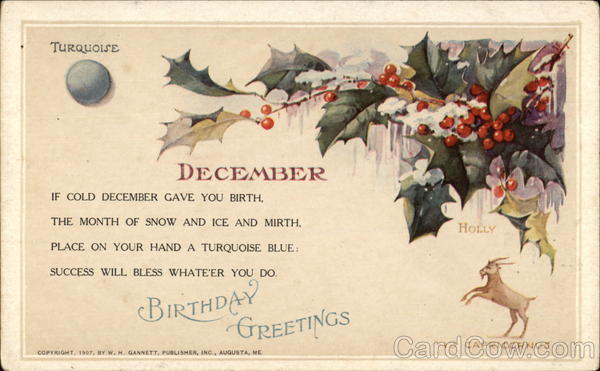 Birthday Greetings For December With Holly Turquoise
