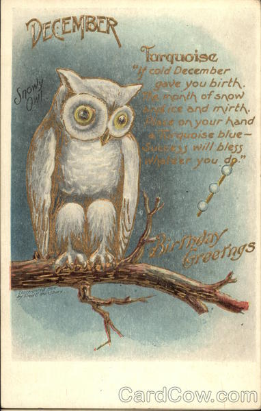 December Birthday Greetings With Snowy Owl On Branch