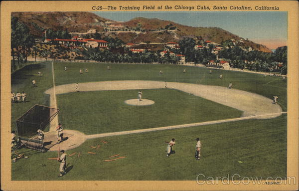 The Training Field Of The Chicago Cubs Santa Catalina