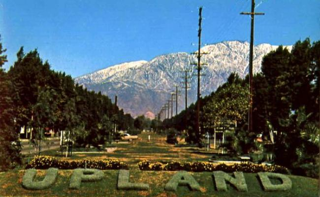 Upland California