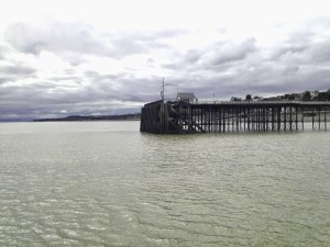 View of Penarth Pier landing stages from the sea