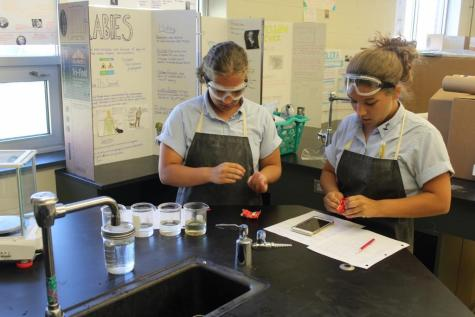 Mrs. Bradley's Chemistry Class Does Skittle Experiments