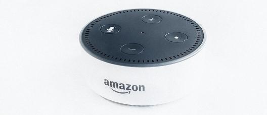 Amazon Alexa Voice Search
