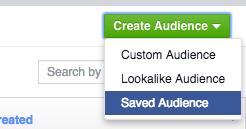 Choose Saved Audience