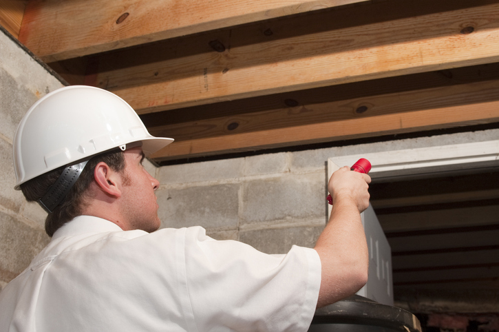 Pest Control PPC Services