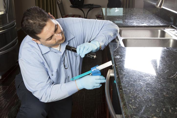 Pest Control SEO Services