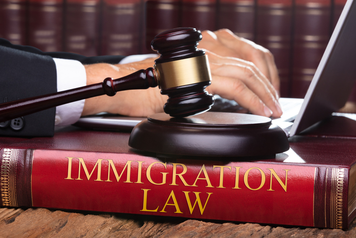 Immigration Lawyer Reputation Management Agency