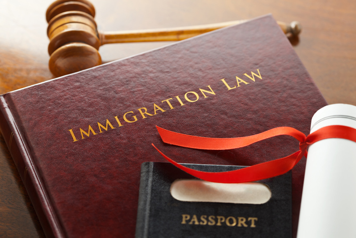 Immigration Lawyer Social Media Advertising Agency