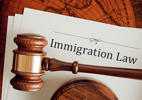 Digital Marketing for Immigration Law Firms