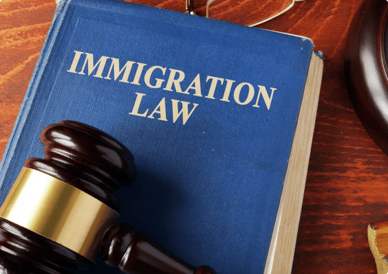 Immigration Lawyer SEO Agency