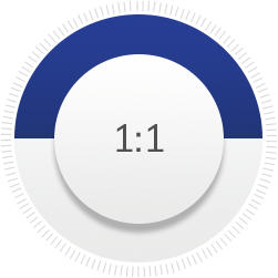 1:1 scale icon