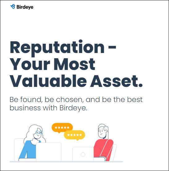 Bird Eye Reputation Management Software