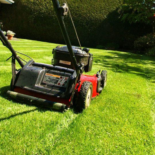 cut pro lawn mowing