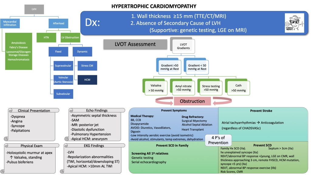Hypertrophic Cardiomyopathy Schematic by Carine Hamo, MD