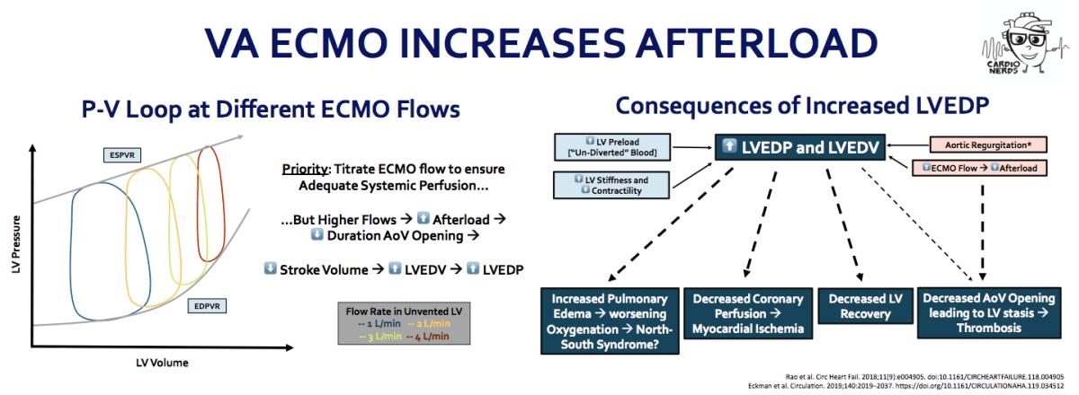 VA ECMO increases Afterload