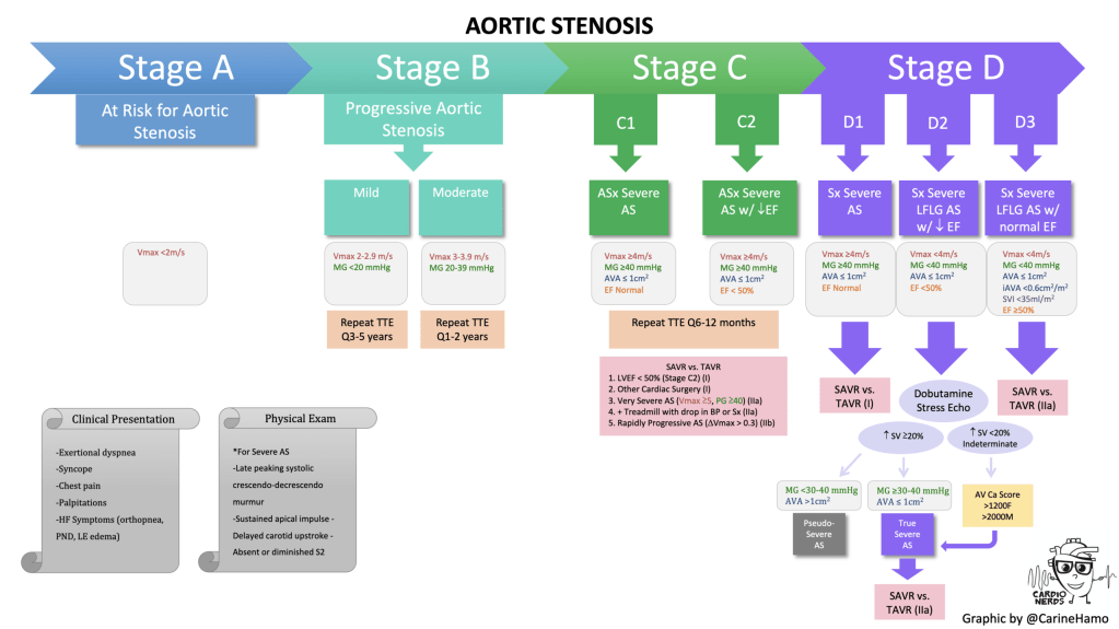CardioNerds Aortic Stenosis