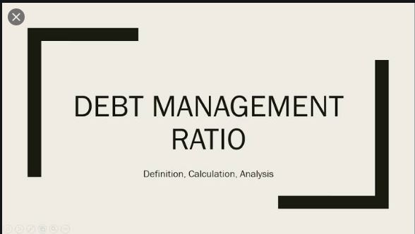 Debt Management Ratio