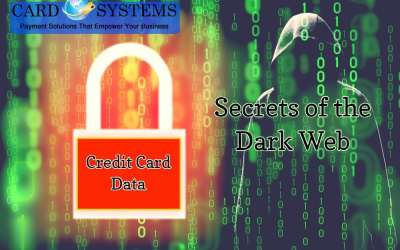 Online Classes For Stealing Credit Card Data?