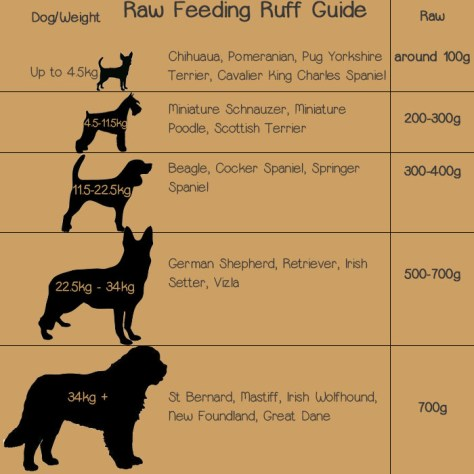 Raw feeding per day guide