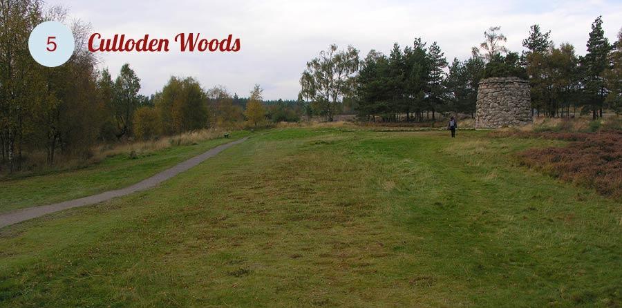 culloden-woods