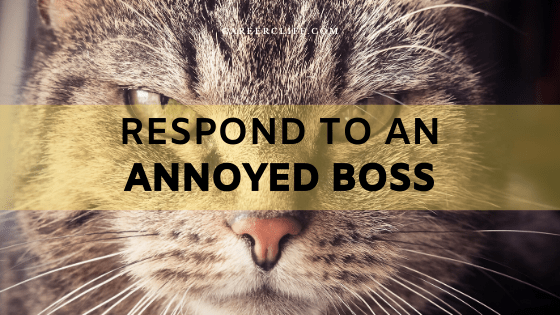 How to Respond to an Annoyed Boss