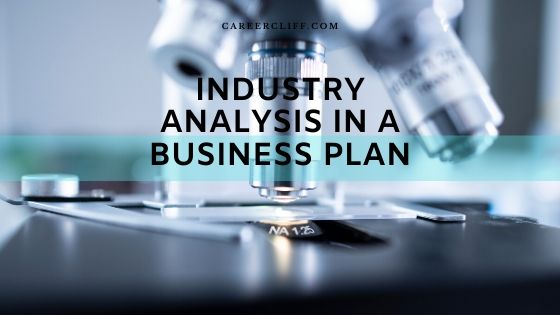 Industry Analysis In A Business Plan – A Case Study